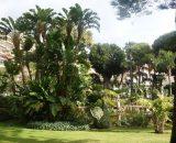 Jardins de la Petite Afrique